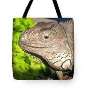 Green Iguana Face Tote Bag