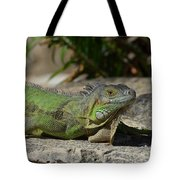 Green Iguana Lizard Tote Bag