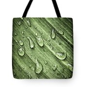 Green Leaf Background With Raindrops Tote Bag