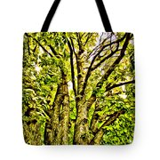 Green Leafy Trees Tote Bag