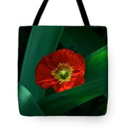 Green Loves Red Loves Green Tote Bag