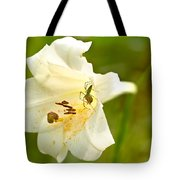 Green Lynx Spider Tote Bag