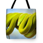 Green Mamba Coiled Up On A Branch Tote Bag