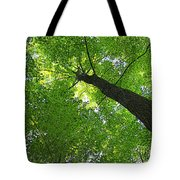Green Maple Canopy Tote Bag