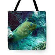Green Moray Eel With Cleaning Fish Tote Bag