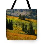Green Mountain Trail Tote Bag by Raymond Salani III