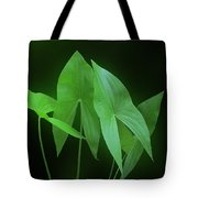 Green Octave Tote Bag