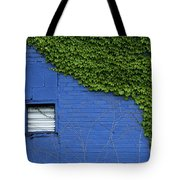 green on blue IMG 0964 Tote Bag