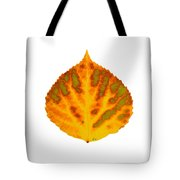Green Orange Red And Yellow Aspen Leaf 1 Tote Bag