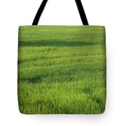 Green Paddy Fields 1 Tote Bag