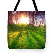Green Park At Sunset Tote Bag by Michal Bednarek