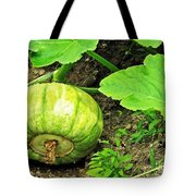 Green Pumpkin Tote Bag