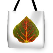 Green Red And Yellow Aspen Leaf 4 Tote Bag