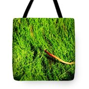 Green - Seaside Abstract Tote Bag