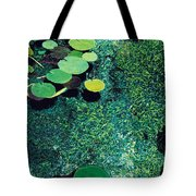 Green Shimmering Pond Tote Bag