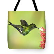 Green Thorntail Hummingbird Tote Bag
