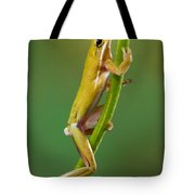 Green Tree Frog Climbing Tote Bag