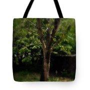 Green Tree In Park Tote Bag