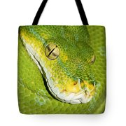 Green Tree Python #2 Tote Bag