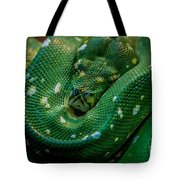 Green Tree Python Curled Tote Bag
