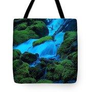 Green Velvet Moss Tote Bag
