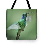 Green Violetear Hummer Beauty Tote Bag
