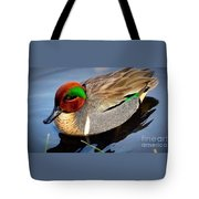 Green Winged Teal  Duck  Tote Bag