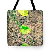 Greenbriar Tote Bag