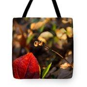 Greenbriar Leaf And Wintergreen Seedpod Tote Bag
