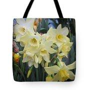 Greenhouse Daffodils Tote Bag