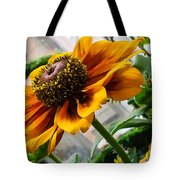 Greenhouse Daisy Tote Bag