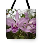 Greenhouse Ruffly Orchids Tote Bag