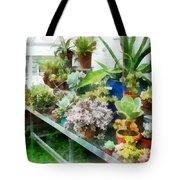 Greenhouse With Cactus Tote Bag