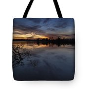 Greenlake Sunset With A Fallen Tree Tote Bag
