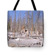 Lonely Cabin Tote Bag