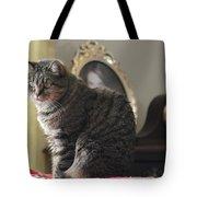Greeting Card Cat Tote Bag