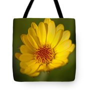 Greeting The Morning Sun Tote Bag