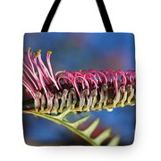 Grevillea Pink Australian Tote Bag