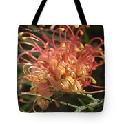 Grevillea  Superb Tote Bag