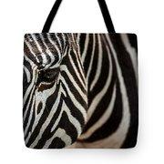 Grevy's Zebra 4 Tote Bag