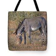 Grevys Zebra Tote Bag