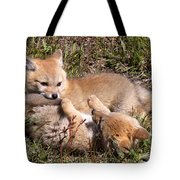 Grey Fox Kitts At Play Tote Bag