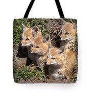 Grey Foxes At Den Tote Bag