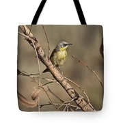 Grey- Headed Honeyeater Tote Bag