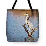 Grey Heron  Ardea Cinerea Tote Bag