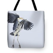 Grey Heron Landing Germany Tote Bag