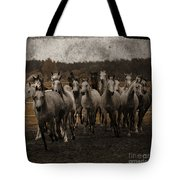 Grey Horses Tote Bag