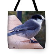 Grey Jay On A Rail Tote Bag