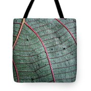 Grey Leaf With Purple Veins 2 Tote Bag