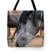 Grey Mare Tote Bag
